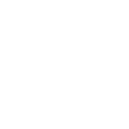 information management icon